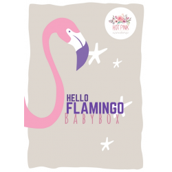 Hello flamingo babybox